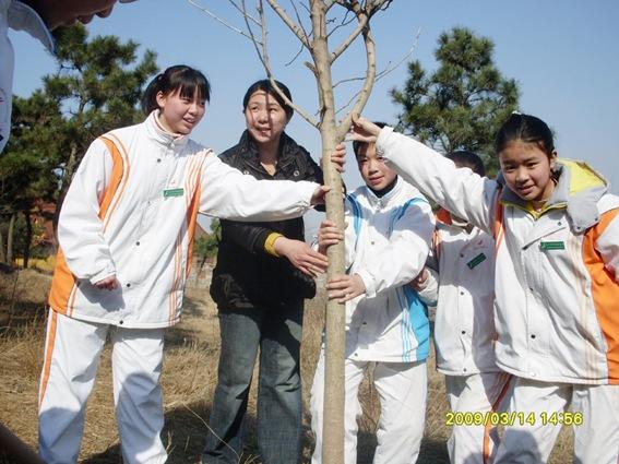 七年级同学义务植树